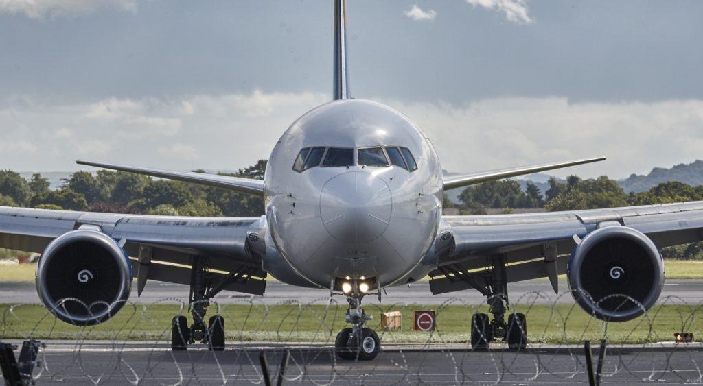 Et fly på bakken. Sett fremenfra